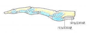 image34