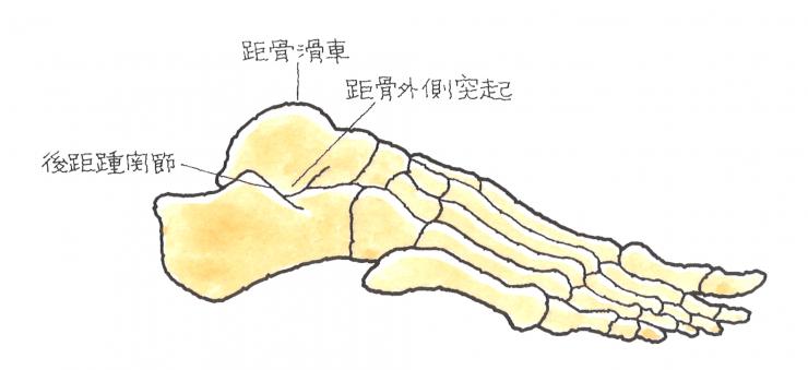 image44
