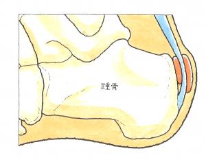 image53