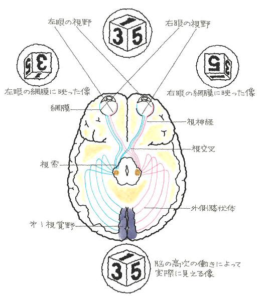 image58