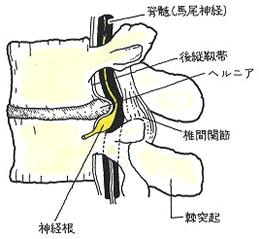 image63