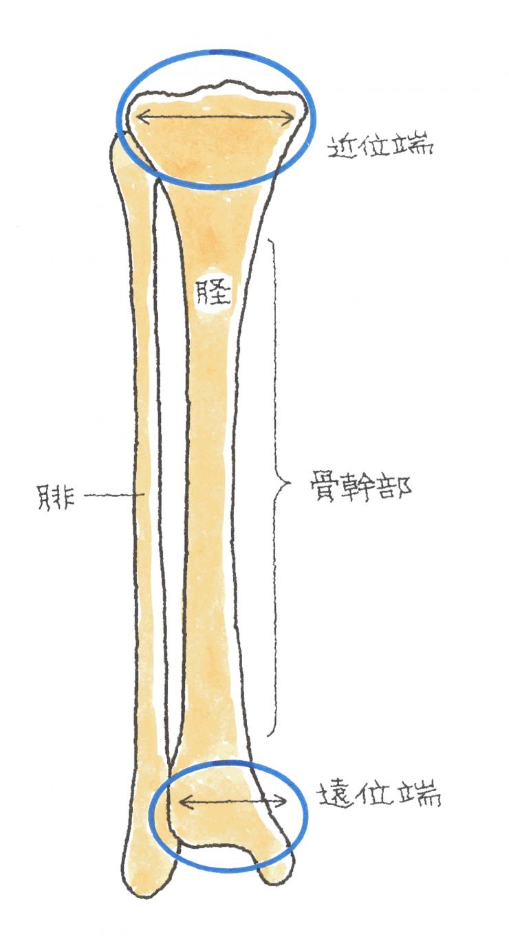 image77